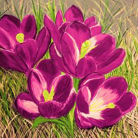 Maggie Ullmann - OPurple Crocus  flowers