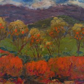 Art Nomad Sandra  Hansen - Orange Bushes