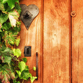Nomad Art And  Design - Orange Door with Green Ivy