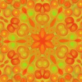 Karen Buford - Orange Flower Mandela