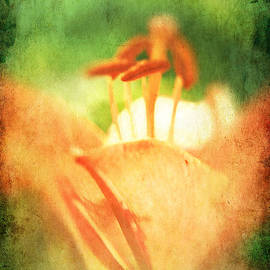Lali Kacharava - Orange large lily