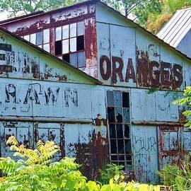 Chuck  Hicks - Orange Plant 1