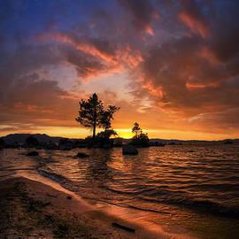 Sean Foster - Orange Sandy Beaches