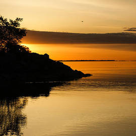 Georgia Mizuleva - Orange Sunrise