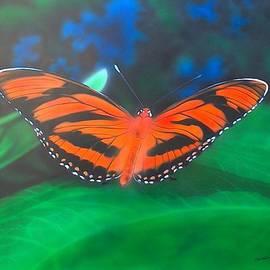 Christopher Soeters - Orange Tiger
