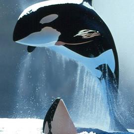 Joe  Roselle - Orcas