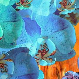 Lynda Lehmann - Orchid Cascade
