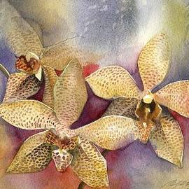 Alfred Ng - Orchid In Yellow