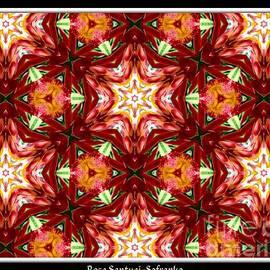 Rose Santuci-Sofranko - Orchid Kaleidoscope