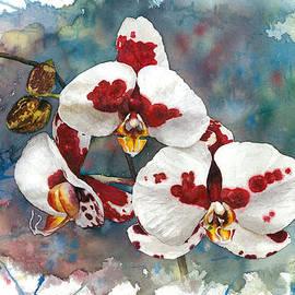Irina Viatkina - Orchid Watercolor Passion