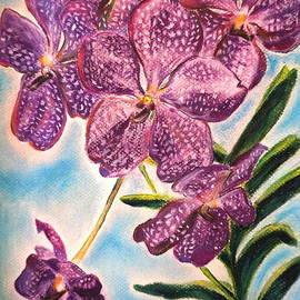 Rosa Garcia Sanchez - Orchid
