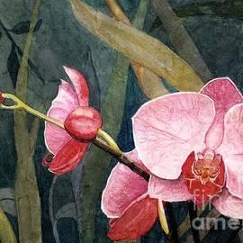 Barbara Jewell - Orchid Trio