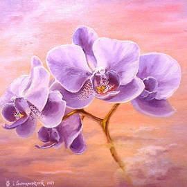 Irina Sumanenkova - Orchids at sunrise...