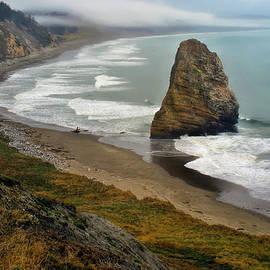 Priscilla Burgers - Oregon Coast
