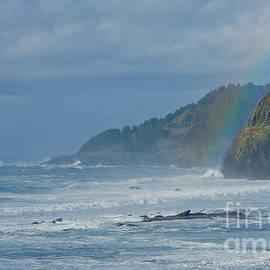 Nick  Boren - Oregon Coast Winterscape