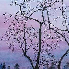 Christine Howe - Oregon Twilight
