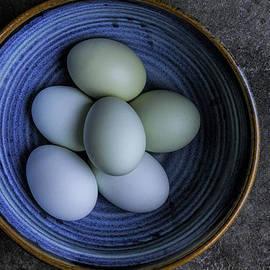 David Stone - Organic Blue Eggs