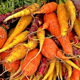 Brian Chase - Organic Carrots