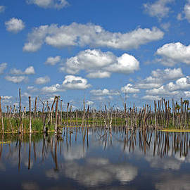 Mike Reid - Orlando Wetlands Cloudscape 3