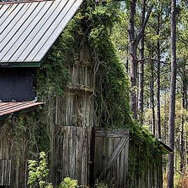 Priscilla Burgers - Orton Plantation Barn