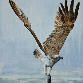 Alan Pickersgill - Osprey with fish