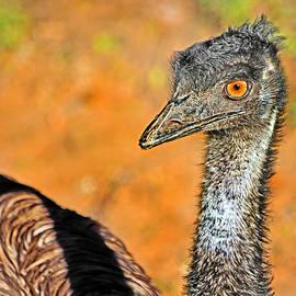 Miroslava Jurcik - Ostrich Girl With Attitude