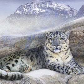 R christopher Vest - Out Of The Wind-- Snow Leopard