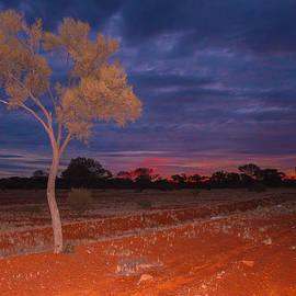 Ross Carroll - Outback Dusk