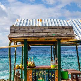 Jess Kraft - Outdoor Tropical Bar