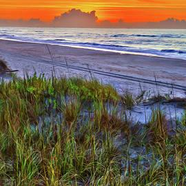 Dan Carmichael - Outer Banks - Ocracoke Sunrise with Sand Dune Plants