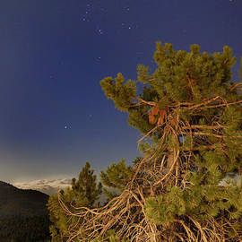 Guido Montanes Castillo - Output of Sirius and Orion over the hight mountains and the old tree