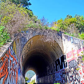 Jim Fitzpatrick - Outside the Abandoned Train Tunnel South of the Old Train Roundhouse at Bayshore near SF II