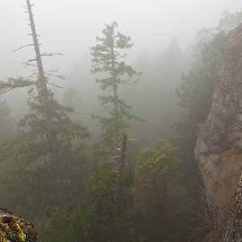 Randy Hall - Over the Edge