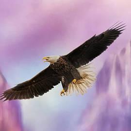 Jai Johnson - Over The Purple Mountains - Bald Eagle