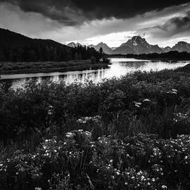 Vishwanath Bhat - Oxbow Bend in Black and White