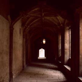 David Hohmann - Oxford University