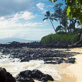 Sharon Mau - Paako Beach Natures Frame
