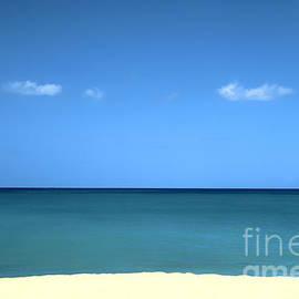 Thomas R Fletcher - Pacific Blue