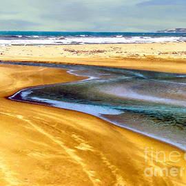 Bob and Nadine Johnston - Pacific Ocean Beach Santa Barbara