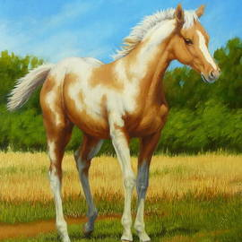 Margaret Stockdale - Paint Foal