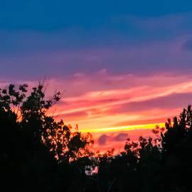 Sara Frank - Paint the Sky