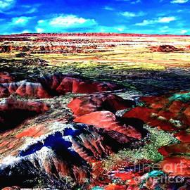Bob and Nadine Johnston - Painted Desert Kachina Viewpoint
