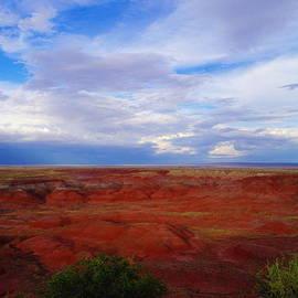 Jeff  Swan - Painted desert landscape