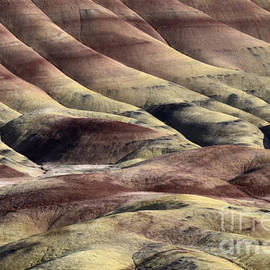 Bob Christopher - Painted Hills Oregon 11