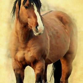 Athena Mckinzie - Painted Kiger