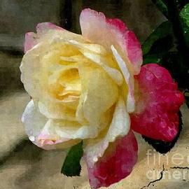 Christy Ricafrente - Painted Rose
