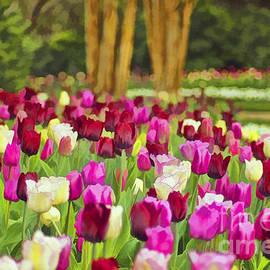 Darren Fisher - Painted Tulips
