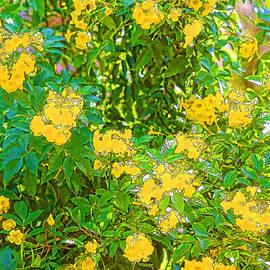 Linda Phelps - Painted Yellow Turmpet Flowers