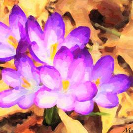 Maggie Vlazny - Paintography of Spring Crocus