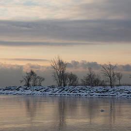 Georgia Mizuleva - Pale Still Morning on Lake Ontario
